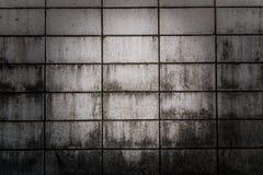 riden ut cementvägg Fotografering för Bildbyråer