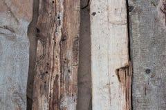 Riden ut gammal träväggdetalj Enkla grå färgbräden med knotholes och grovt korn som tillsammans spikas utomhus- _ foto arkivfoton