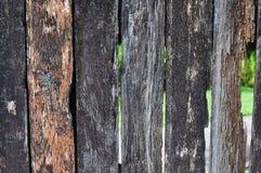 Riden ut gammal wood bakgrund Arkivbild
