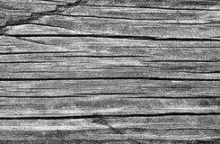Riden ut svartvit träbrädetextur Arkivfoto