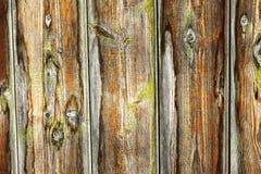 Riden ut träplankayttersida fotografering för bildbyråer