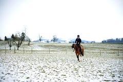 Rider Stock Photo