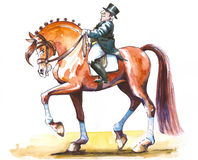 Rider. Rider on dressage horse in trot.Watercolor picture I have painted by myself Royalty Free Stock Photo