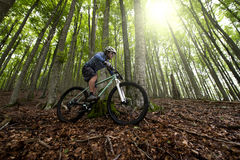 Rider in action. At Freestyle Mountain Bike Session Royalty Free Stock Photos