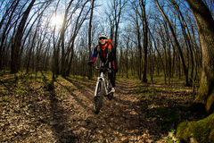 Rider in action at Freestyle Mountain Bike Session Stock Image