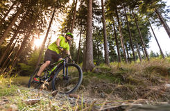 Rider in action at Mountain Bike Royalty Free Stock Photos