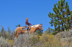 Rider against the sky. A girl on a palomino horse, riding on a ridge with the blue sky in the background Royalty Free Stock Photos