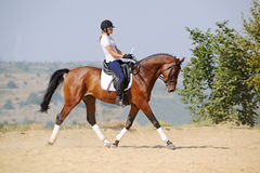 Rider on bay dressage horse, going trot