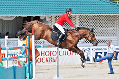 Rider on bay jump horse Stock Images