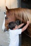 Rider boy caressing a horse Stock Photo
