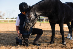 Rider boy caressing a horse in the ranch. On a sunny day royalty free stock photos