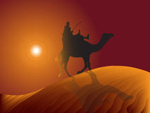 Rider. Camel goes to the dunes Royalty Free Stock Image
