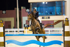 Rider competes in horse jumping show. WISTA AREA, KUWAIT - NOVEMBER 16: An unknown male rider participates in horse jumping competition on November 16, 2012 in Stock Photos