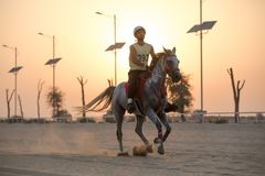 A rider competing in a desert endurance race. Dubai, UAE - Sep 30, 2017: An athletic rider competing in a long-distance endurance horse race in the desert at stock photo