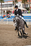 Rider competing in dressage competition classic, Mijas Stock Images