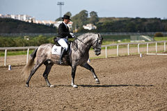 Rider competing in dressage competition classic Stock Images