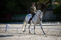 Rider competing in dressage competition classic Royalty Free Stock Image