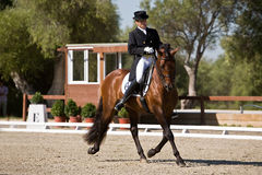Rider competing in dressage competition classic, Montenmedio Stock Photography