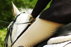 Rider dressage test. White horse at Dressage Algarve Championship Royalty Free Stock Image