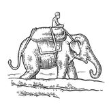 Rider on elephant. Vector engraved vintage Stock Photography