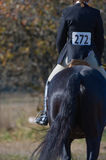 Rider in equestrian event. Rear view of rider with number on back in equestrian event Stock Photography