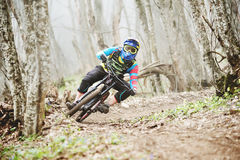 The rider in the full-face helmet passes a counter-rotation in the glide against the background of a misty forest. The young man in the full-face helmet passes Stock Photos