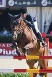 Rider Hargreaves, Julia. CSIO Barcelona. Royalty Free Stock Photo