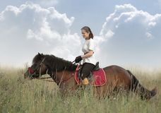 Rider and horse. Rider and bay horse in a floor Royalty Free Stock Images