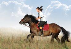 Rider and horse. Rider and bay horse in a floor Stock Photo