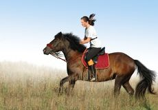 Rider and horse. Rider and bay horse in a floor Stock Photos