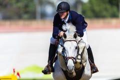 Rider Horse Hoofs Jump Pole Photo libre de droits
