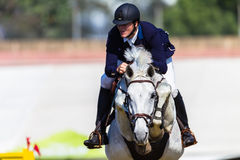 Rider Horse Hoofs Jump Pole Royaltyfri Foto