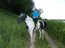 Rider on a horse. Royalty Free Stock Image
