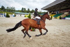 Rider on horse at international competitions Royalty Free Stock Image