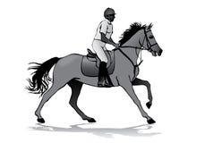 Rider on horse Stock Photo
