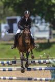Rider Horse Jump Woman Stock Photography