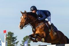 Rider Horse Jumping Fotografie Stock Libere da Diritti