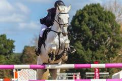 Rider Horse Jumping Closeup Immagini Stock