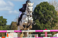 Rider Horse Jumping Closeup. Rider abstract unidentified horse jumping gate poles closeup equestrian show action Stock Images