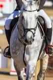Rider Horse Jumping Closeup. Rider horse jumping gate poles closeup action Stock Images