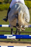 Rider Horse Jumping Closeup Rear Hoofs Photographie stock