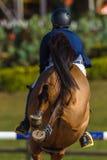 Rider Horse Jumping Closeup Rear Hoofs Immagine Stock Libera da Diritti