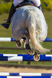 Rider Horse Jumping Closeup Rear Hoofs Royalty Free Stock Images