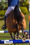 Rider Horse Jumping Closeup Rear Hoofs. Girl rider horse jumping gate poles closeup rear legs hoofs action Stock Photography