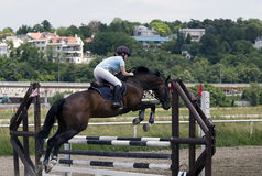 Rider and horse jumping over the barrier Royalty Free Stock Images