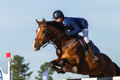 Rider Horse Jumping. Rider horse show jumping action closeup equestrian event Royalty Free Stock Photos