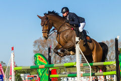 Rider Horse Jumping. Rider horse show jumping action closeup equestrian event Royalty Free Stock Image