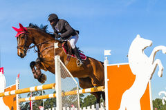 Rider Horse Jumping. Rider horse show jumping action closeup equestrian event Stock Images