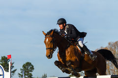 Rider Horse Jumping. Rider horse show jumping action closeup equestrian event Royalty Free Stock Photography