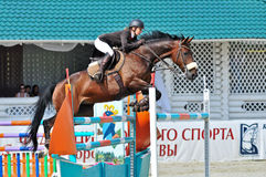 Rider with horse jumps over a hurdle Royalty Free Stock Photography